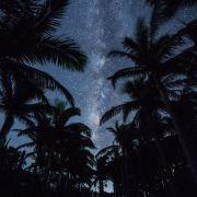 沖縄・石垣島 ヤシ並木と天の川